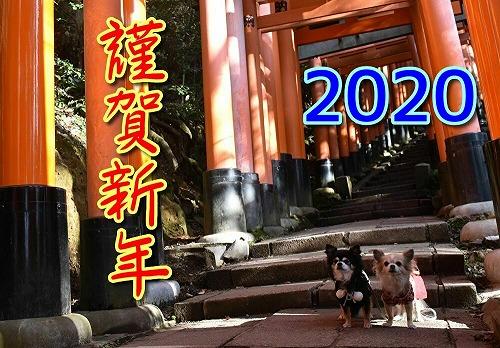 20200101NG (6)