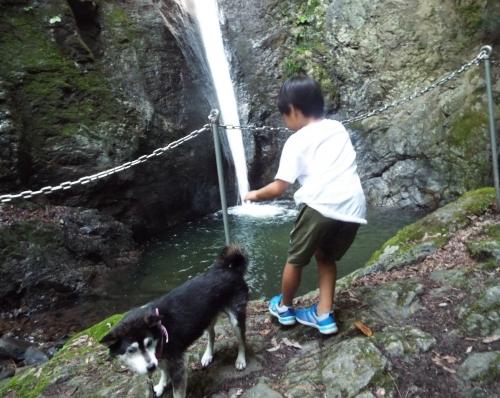 線が滝滝壺