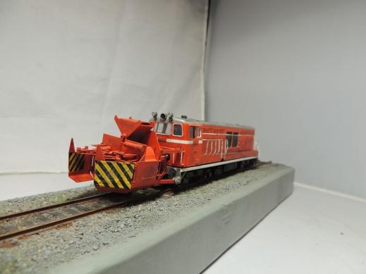 DD14 珊瑚模型