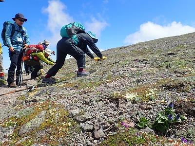 81登山会2-16