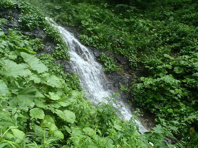 滝ノ沢15