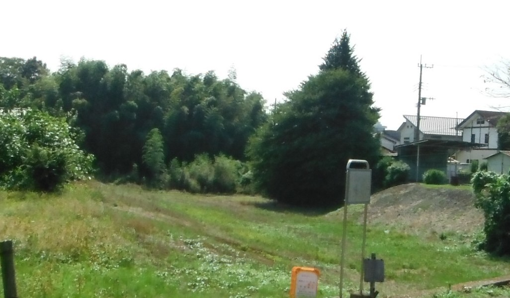DSCF3528-1.jpg