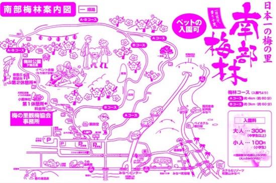 fc2blog_20200222203759b21.jpg