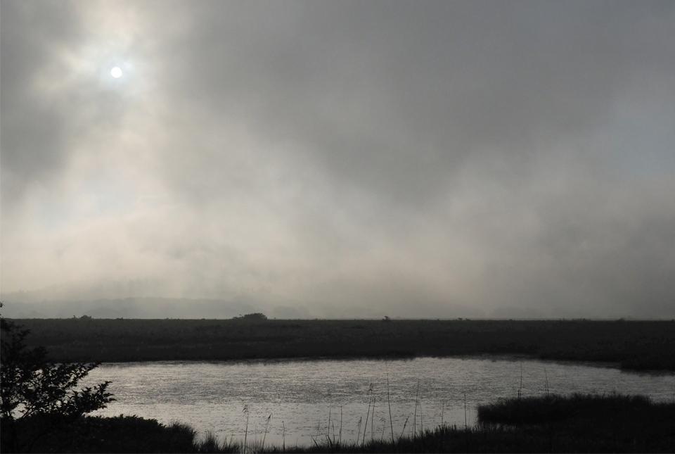 0223 霧の八島湿原光芒 960×645