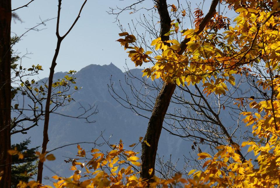 0536 日向山からの地蔵岳 960×645