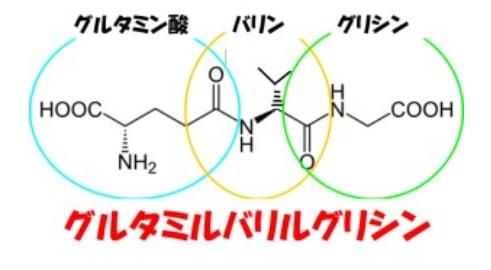 グルタミンbリルグリシン