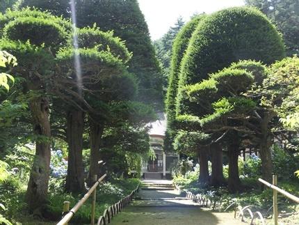 長野県山形村 清水寺