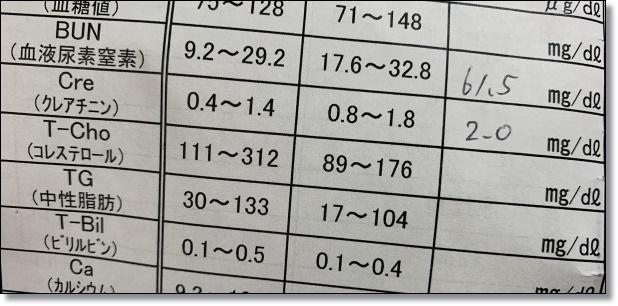 901 (1)