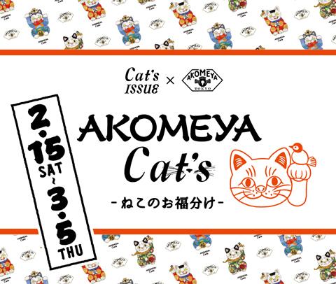 akomeyacats_mv_02_0108