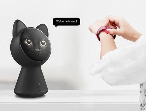 black_cat_smart_home_controller_01