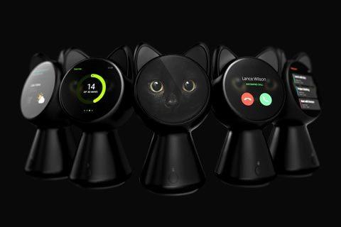 black_cat_smart_home_controller_05