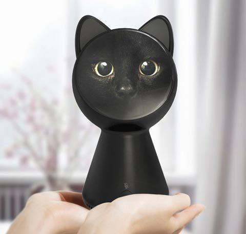 black_cat_smart_home_controller_09