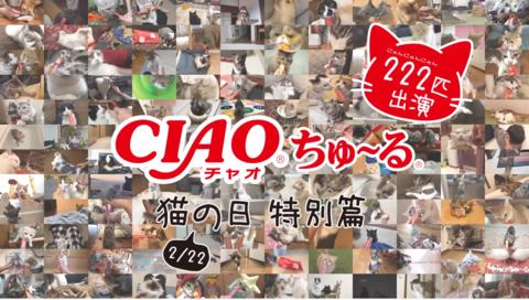 caochuru1_02222020