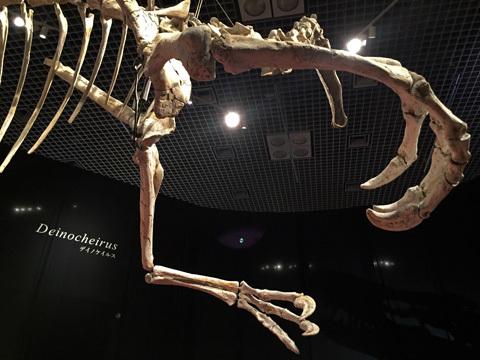 deinocheirus_100519