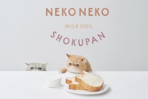 nekoneko_shokupan_main