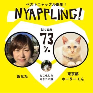 nyappling12