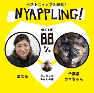 nyappling13