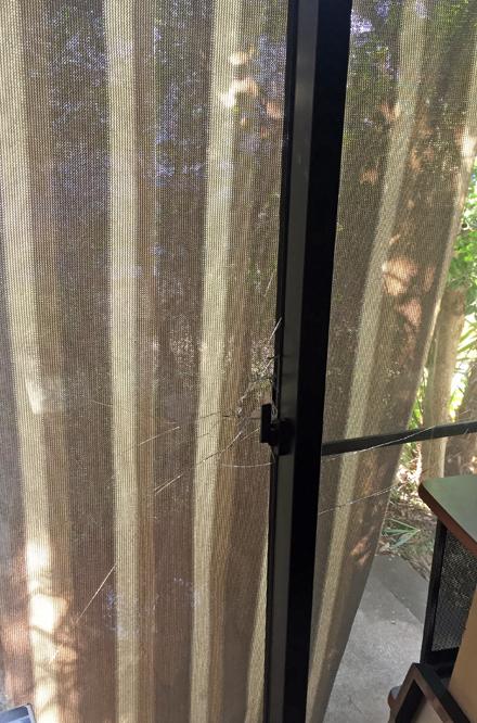 window3_011720
