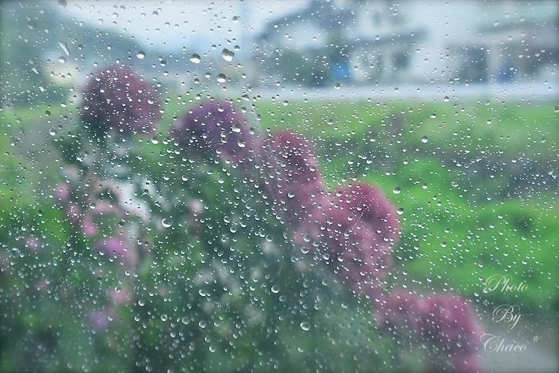 雨の日の記憶