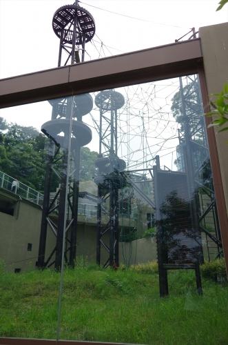 福岡市動物園 ボルネオオランウータン 放飼場 獣舎 ミミ 混合飼育 シロテテナガザル