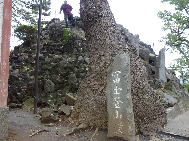 sinagawahuji01.jpg
