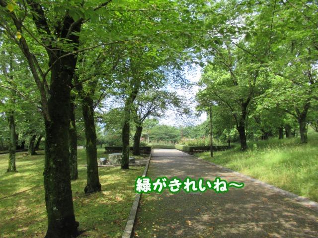 s_IMG_4927.jpg