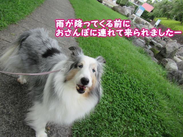 s_IMG_5110.jpg
