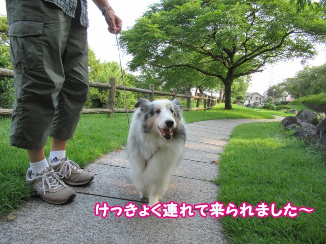 s_IMG_5234.jpg