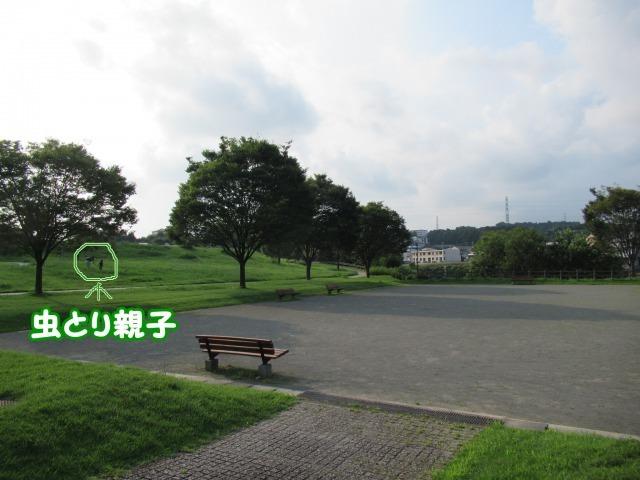s_IMG_5266.jpg