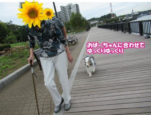 s_IMG_5806.jpg
