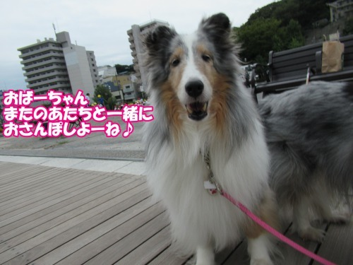 s_IMG_5830.jpg