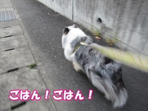 s_IMG_6113.jpg