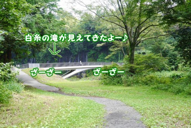 s_P1410838.jpg