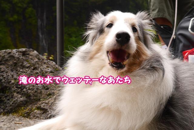 s_P1410870.jpg