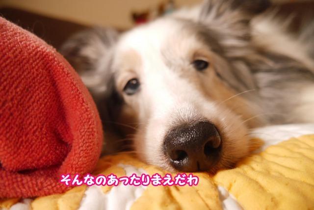 s_P1420118.jpg
