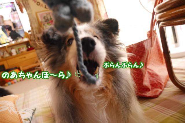 s_P1420313.jpg