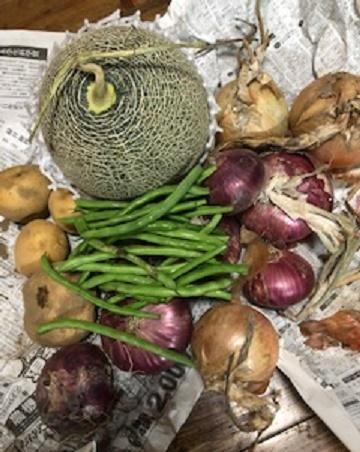 メロンと野菜