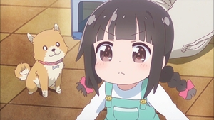 香子の妹と愛犬