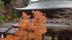 晩秋の永平寺