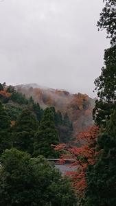 霧たちのぼる