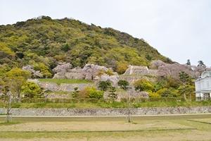 久松山と鳥取城址