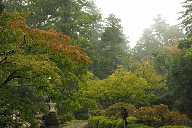 庭園1910