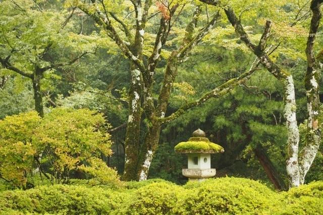灯籠1910