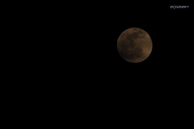moon200110