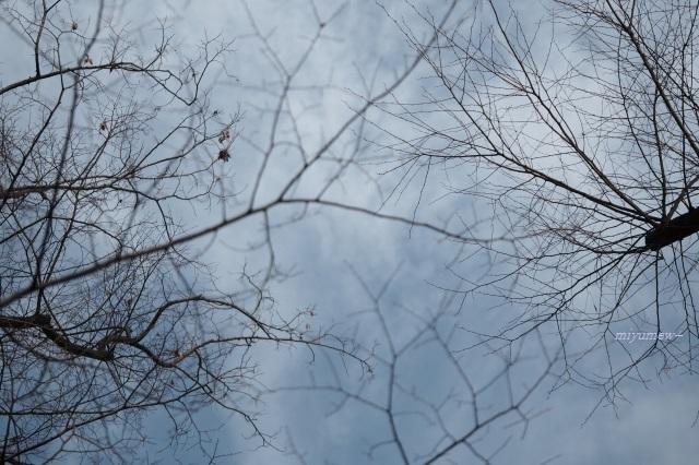 曇り空200126