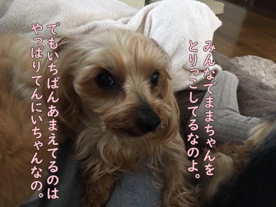 image420010801.jpeg