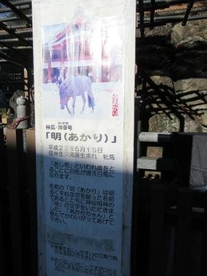 SS20191215_006.jpg