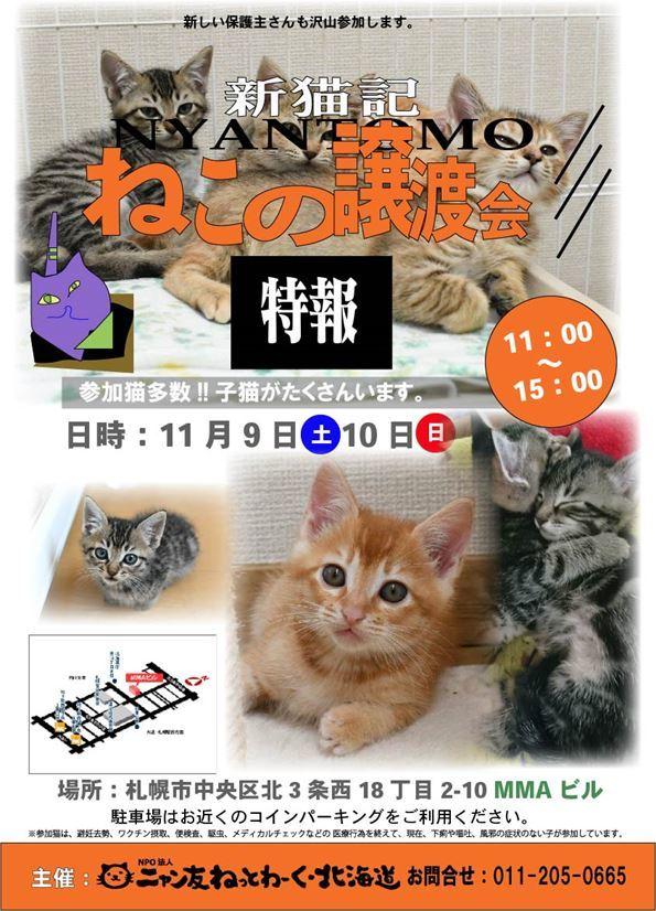 譲渡会ポスター1189_R