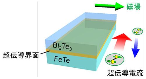 トポロジカル物質で超伝導ダイオードを実現