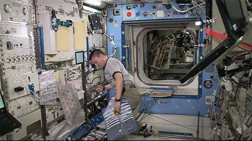 宇宙飛行士の骨の減少をメラトニンで抑制